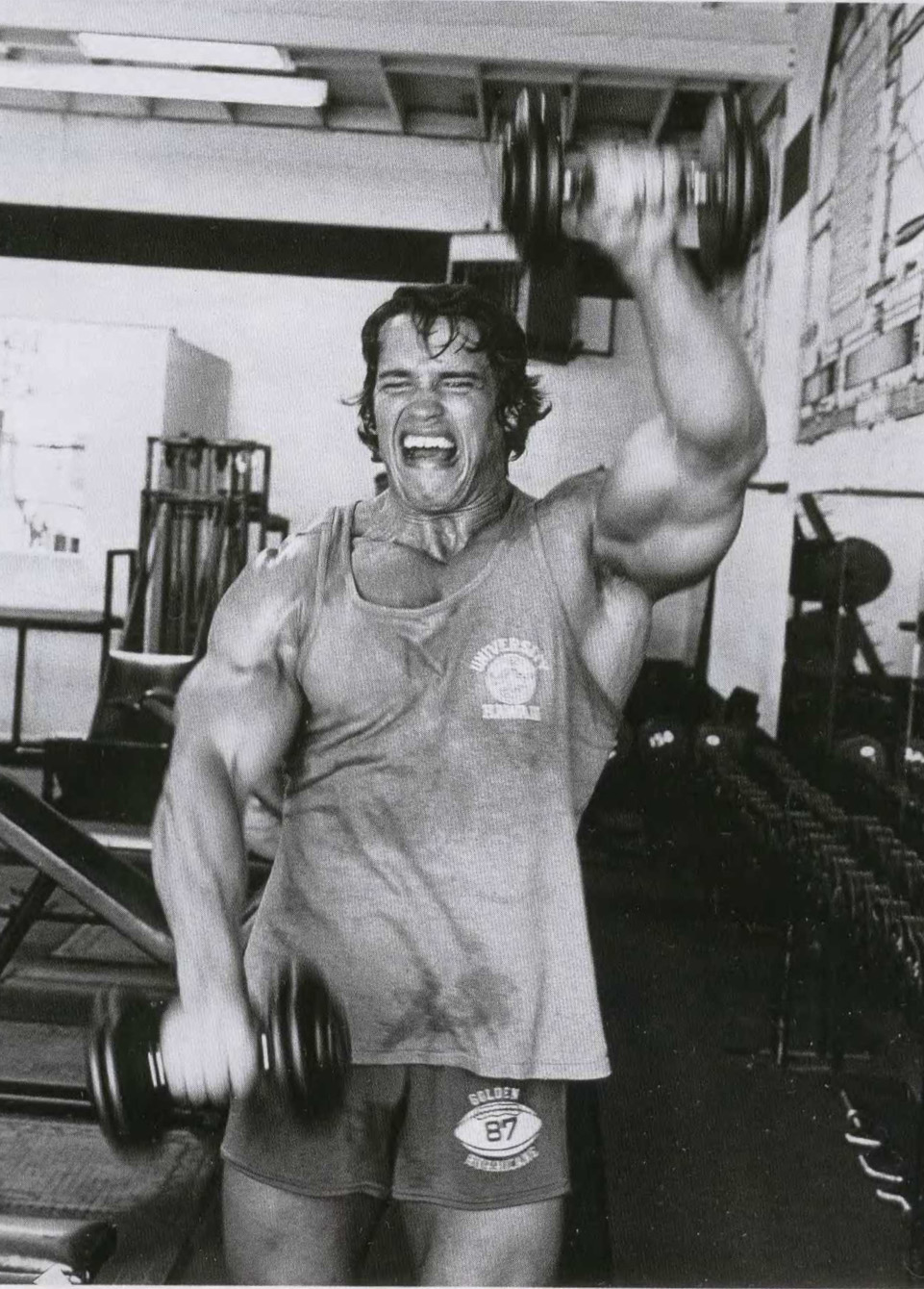 arnolds philosophy on bodybuilding Intelligent discourse on the art and science of bodybuilding.